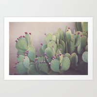 Still Life in Marfa Art Print