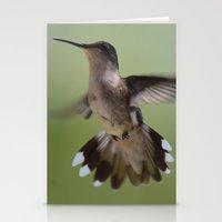 Hummingbird In Flight Stationery Cards