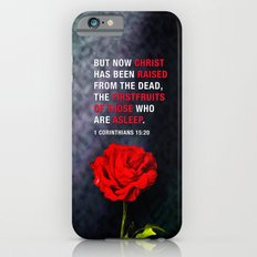 FIRSTFRUITS iPhone 6s Slim Case