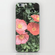 Papaveraceae iPhone & iPod Skin