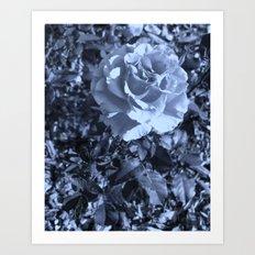 roses X Art Print