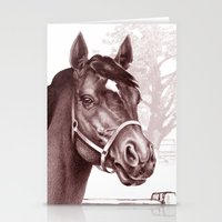 Stare of The Stallion Stationery Cards