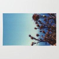 Sun-Bleached Blossom Rug