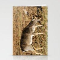 Fallow Deer Buck Stationery Cards