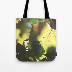 Fall Is In the Air II Tote Bag