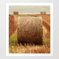 Hay Bale Symmetry Art Print