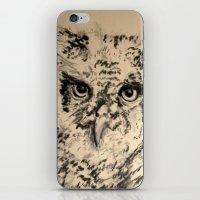 Owls, 2.5 - Original iPhone & iPod Skin