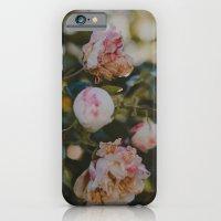 White Roses iPhone 6 Slim Case