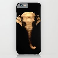 iPhone & iPod Case featuring Elephant Trunk by Derek Fleener