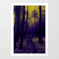 Woods stream Art Print