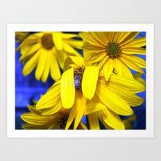 Yellow Sunflowers, Blue Bee Art Print