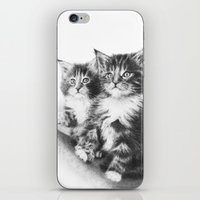 Double Dose of  Kittens iPhone & iPod Skin
