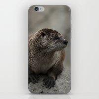 Doin' What He Otter iPhone & iPod Skin