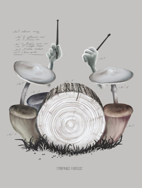 Mushroom drums Art Print
