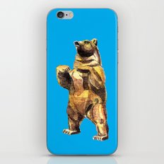 Central Park Bear iPhone & iPod Skin