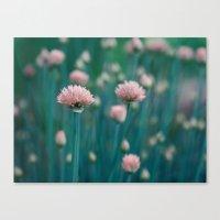 Blue Field Canvas Print