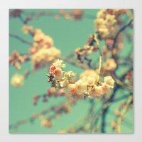 Pink Blue Blossom Canvas Print