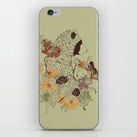 Northern Bear iPhone & iPod Skin
