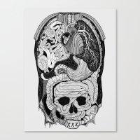 Gross Anatomy Canvas Print