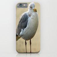 Gull iPhone 6 Slim Case
