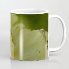 It all revolves around Mug