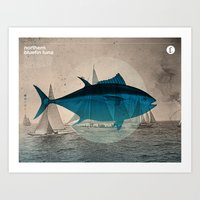 Northern Bluefin Art Print
