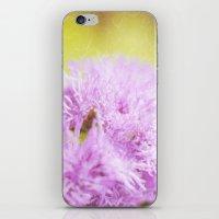 Lavender flower macro iPhone & iPod Skin