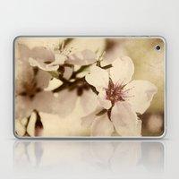 Apricot Bloom Laptop & iPad Skin