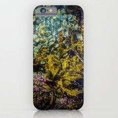 rockpool iPhone 6 Slim Case