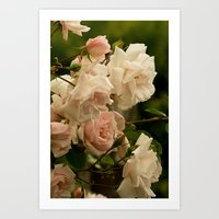 A Bed of Roses Art Print