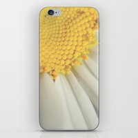 Sunny Side Up iPhone & iPod Skin