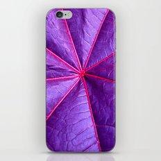 purple leaf macro XIV iPhone & iPod Skin
