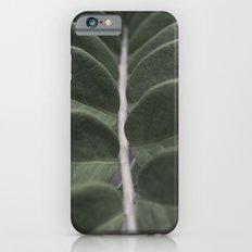 Money Plant Slim Case iPhone 6s