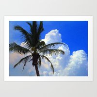 Florida Beauty Art Print