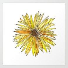 Yellow Gerber Daisy Art Print