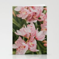 Ice-Cream Orchids Stationery Cards