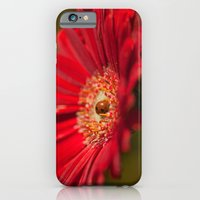 The Gerbera And The Lady… iPhone 6 Slim Case