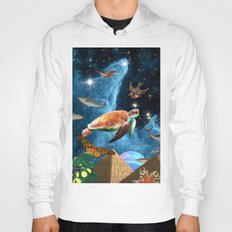 HEAVEN AND EARTH Hoody