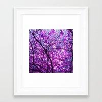 purple tree XXXIII Framed Art Print