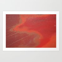 Orange Wild Or Rusted Art Print