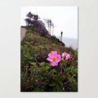 Pink Wild Rose, Gravels … Canvas Print