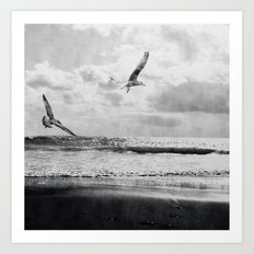 Seascape Freedom Art Print