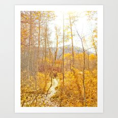 Sun Valley Art Print