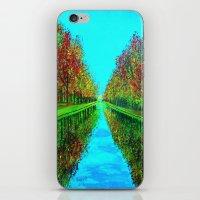 Fall Reflection iPhone & iPod Skin