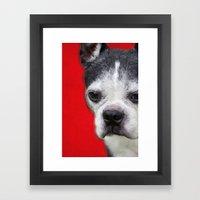 Tuxedo Man Framed Art Print