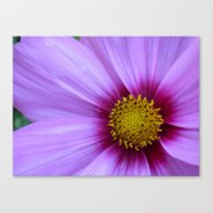 An Happy New Year Canvas Print