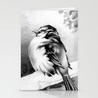 Sparrow In The Cold 2 Stationery Cards