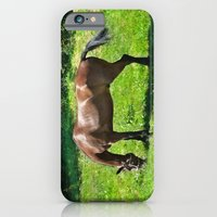 iPhone & iPod Case featuring A Grazing Horse by Elizabeth Tompkins