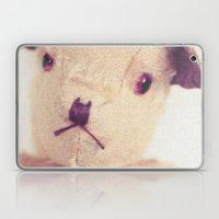 B for bear Laptop & iPad Skin