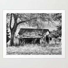 ruined shed II Art Print